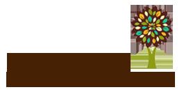 Moya Mohan Counselling Logo